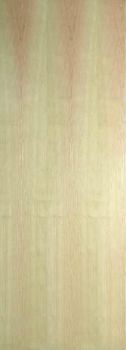 Internal Ash Door Prefinished